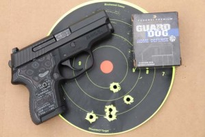 SIG P224 with target