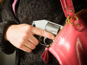 best_concealed_carry_gun_F