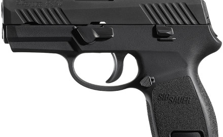 SIG Sauer is expanding on its P320 line of pistols with the introduction of a .45-caliber version, a subcompact model and two new finish options for existing models.