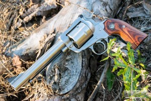 Ruger Super Blackhawk appearance