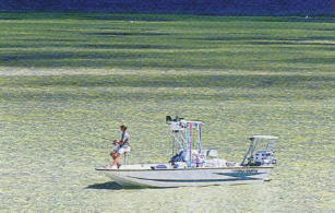 Apalachicola bay fishing florida sportsman for Apalachicola fishing report