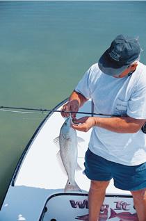 Winter Fly Fishing Florida