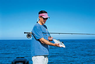 Catch spanish mackerel on fly tackle florida sportsman for Fishing rod in spanish