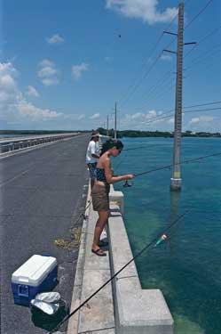 Bridge trippin in the keys for Florida keys bridge fishing