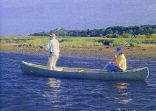 Cedar key fly fishing florida sportsman for Fishing in gainesville fl