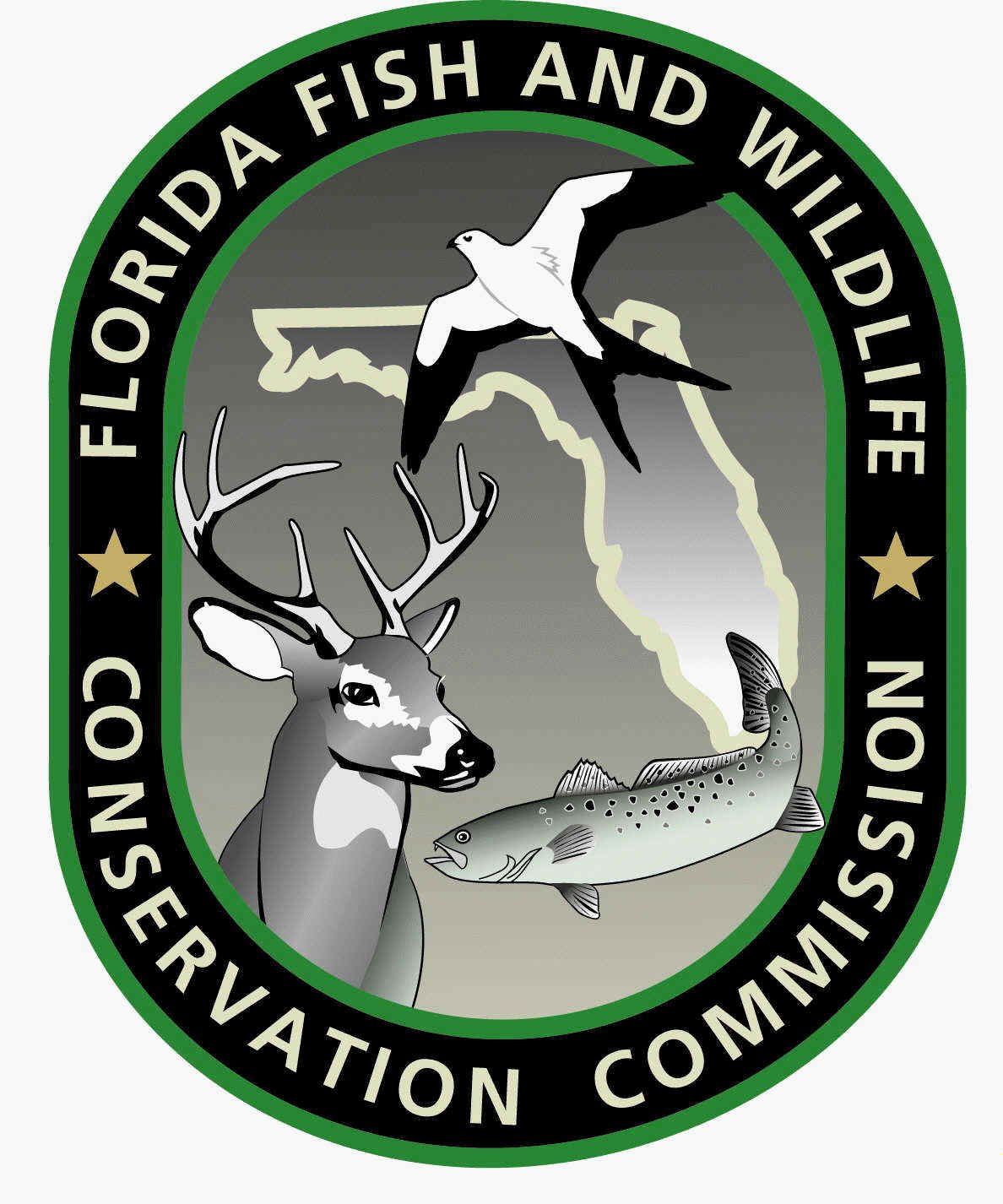 Florida recreational saltwater fishing regulations for Do you need a license to fish in florida