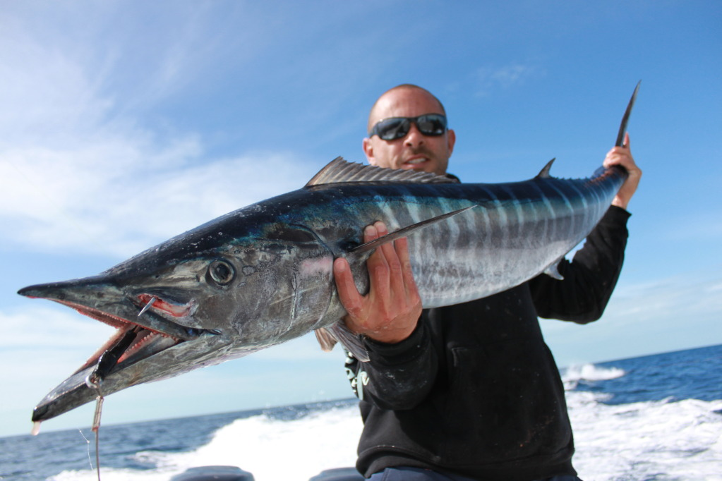 Forget the turkey serve wahoo in the bahamas this for Fishing nassau bahamas