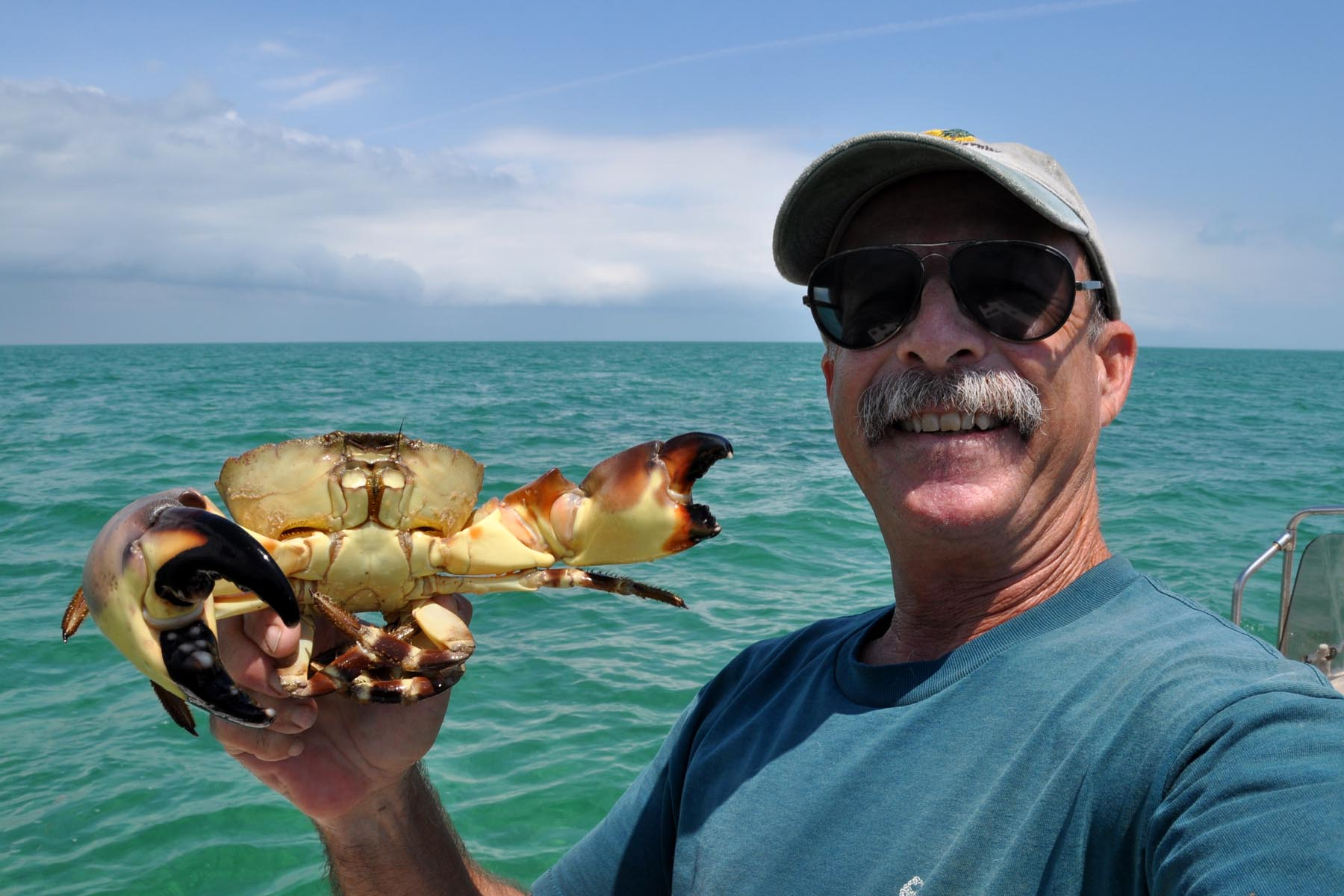 how to catch stone crabs