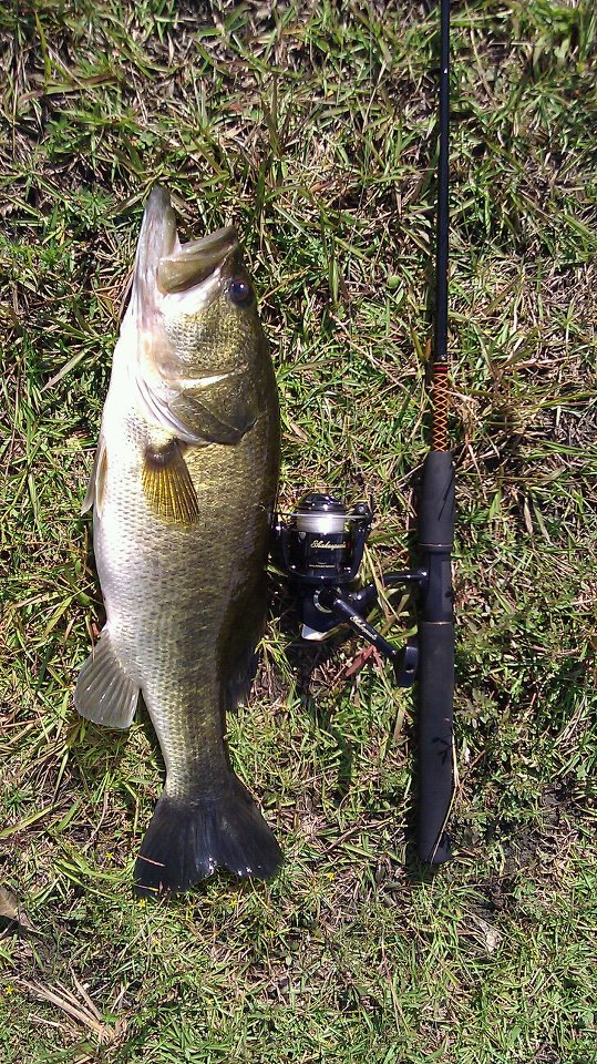 Wintertime bass fishing florida sportsman for Bass fishing tournaments in florida