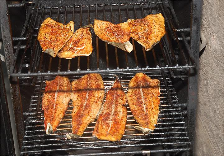 Smokin 39 florida fish florida sportsman for Smoking fish electric smoker