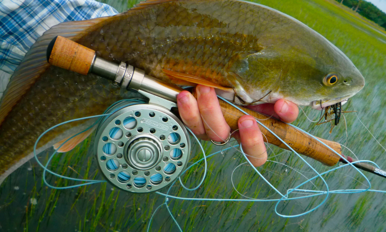 Hd redfish fly florida sportsman for Redfish fly fishing