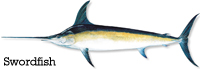 SWORDFISHinfo