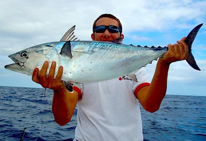 How to catch bonito florida sportsman for Bonita fish recipes
