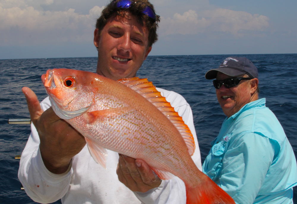 How to catch vermilion snapper florida sportsman for Snapper fish florida