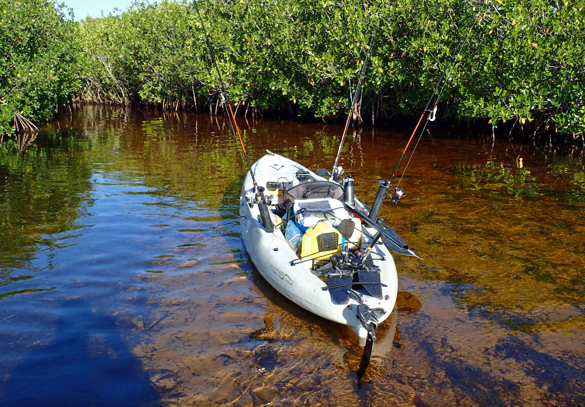 blackwater kayak florida images