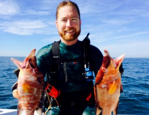 spearfishing grouper and hogfish