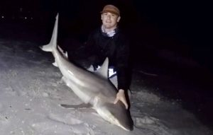 Naples Surf Fishing Blacktips