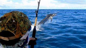 Panama Island Fishing Trip