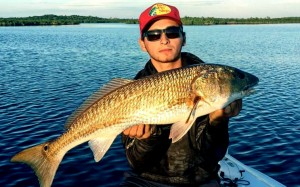 Flamingo Redfish
