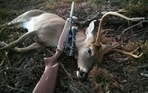 Florida Buck