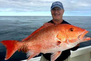 Mayport Sea Bass