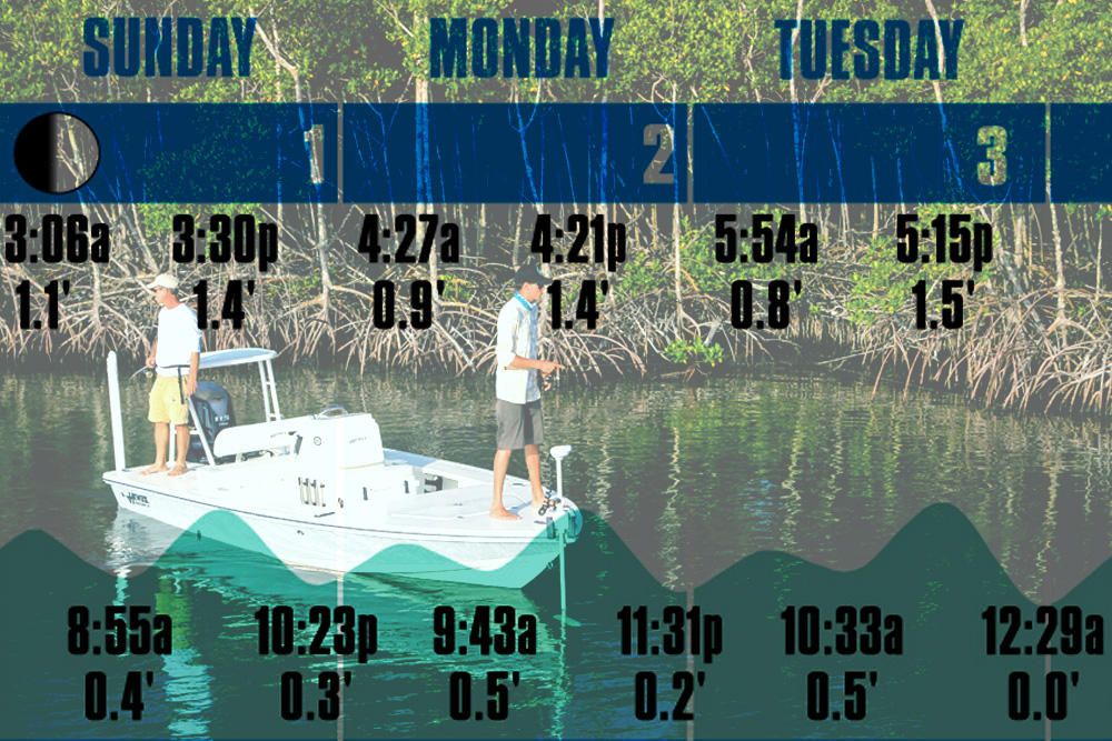 Free Complete 2017 Florida Monthly Tide Charts Available Online