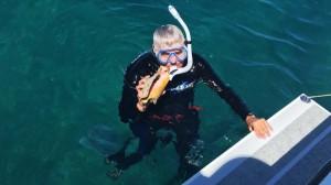 Grand Bahama Conch