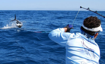 Florida sportsman fishing reports gear boats how to for Florida sportsman fishing report