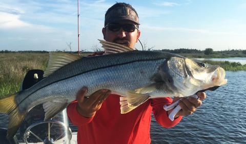 Bigosnook florida sportsman for Florida sportsman fishing report