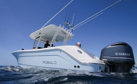 Robalo R302 Freeboard Review