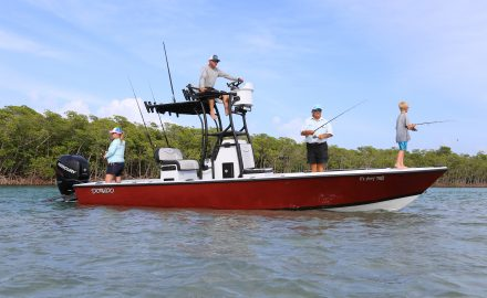 Dorado 25 Fishing Review