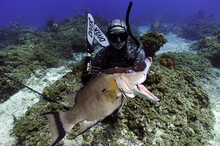 anchoring or drifting spearfishing