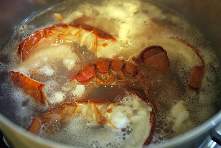 Florida lobster roll recipe