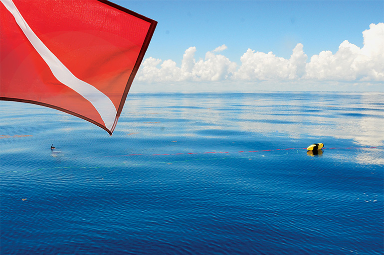 dive flag above spearfishermen