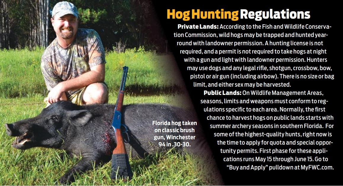 rifles for hunting hogs