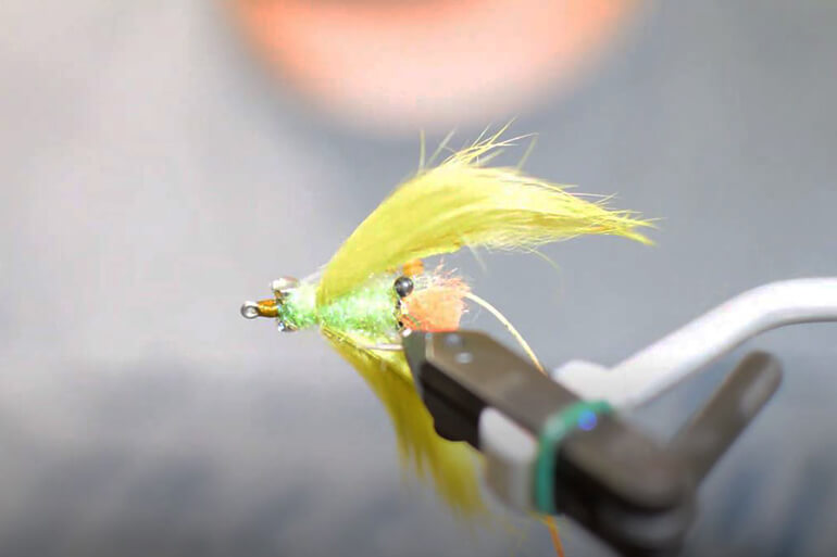 tropical fly tying