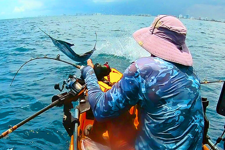 southeast florida kayak sailfish