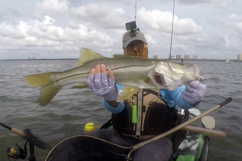 southwest florida fishing report