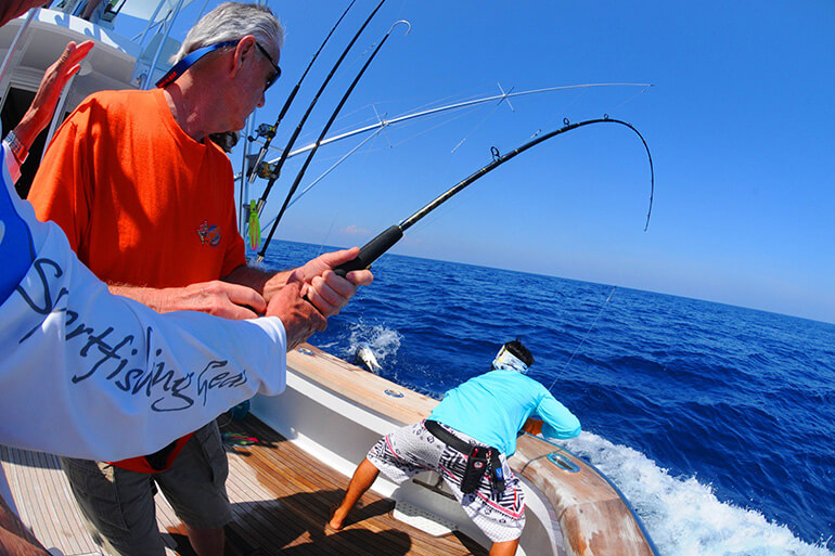 light tackle billfish