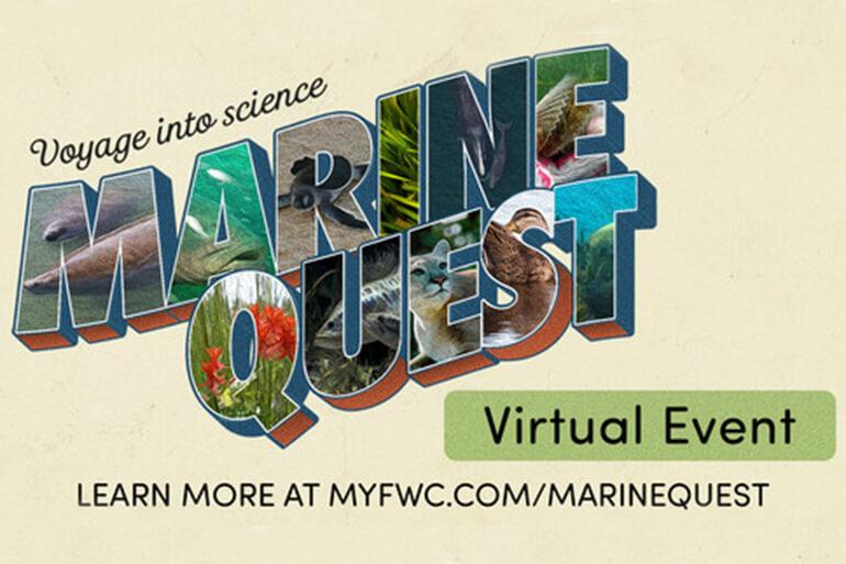 virtual marine learning