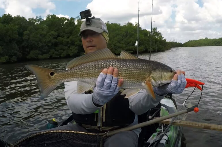 jerkshad kayak redfish