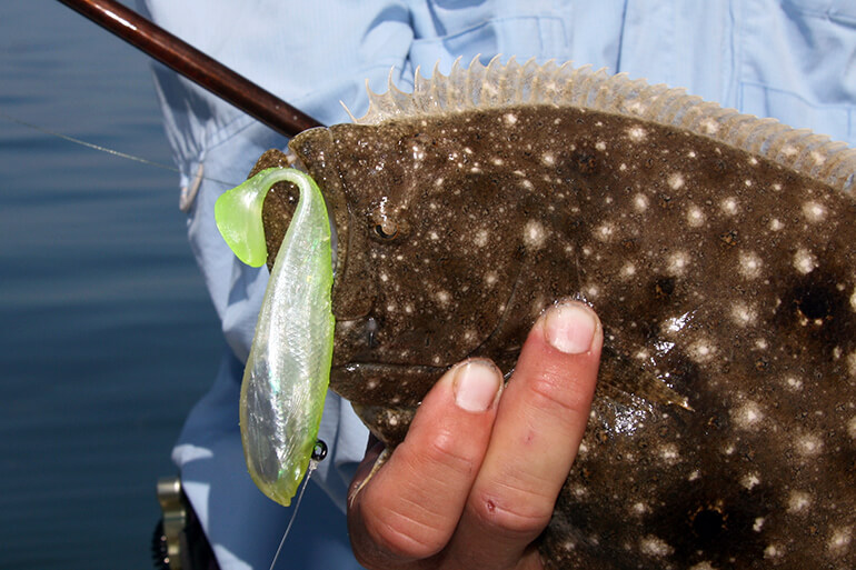 best rigs for flounder