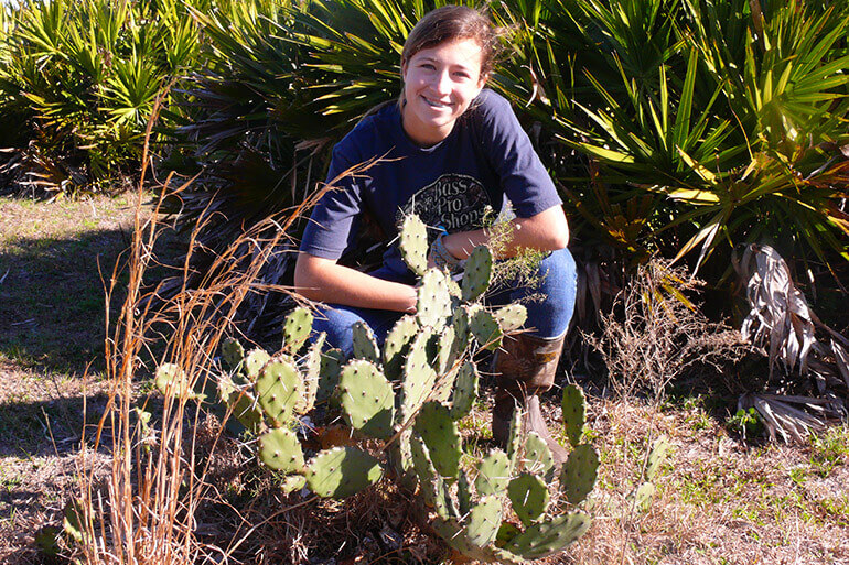 idenifying prickly pear cactus