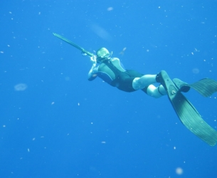 Jupiter Spearfishing