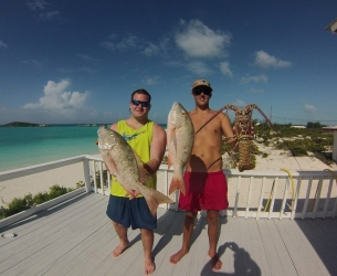 Bahamas Spearfishing