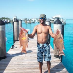 Brandon's Hogfish