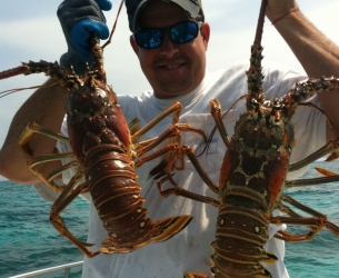 Ozzy\'s Lobster