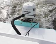 Dusky 19 Bay Shark