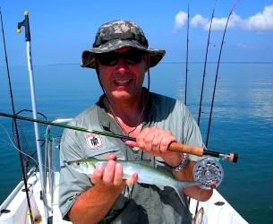 Flamingo Ladyfish