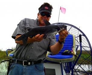 Lake Washington Catfish